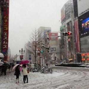 【都内積雪画像】2014/2/8 都内の大雪の様子まとめ